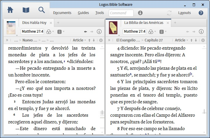 SavingWorkspace TwoSpanishBibles