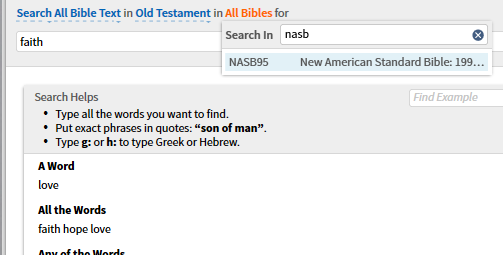 SearchBibles.png